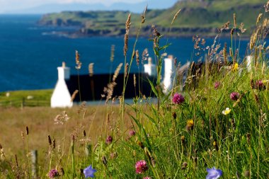 Treshnish & Haunn Cottages